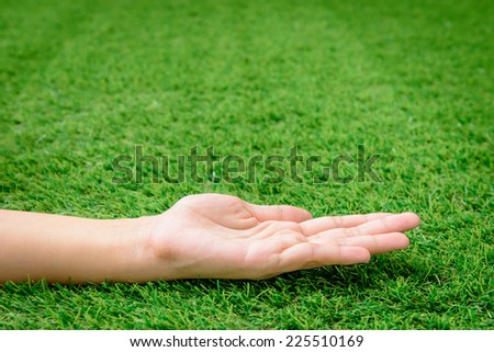 Empty open hand on green grass