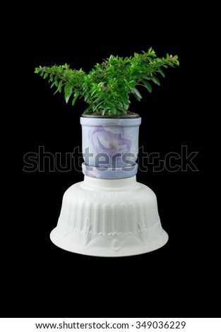 Empty ornamentals flowerpots and flowerpot with flower isolated on black background - stock photo