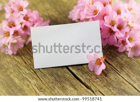 empty paper card with spring flowers - stock photo