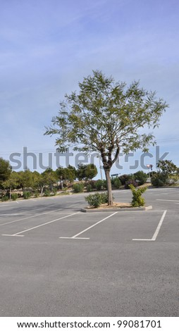 Empty Parking Lot with Tree - stock photo