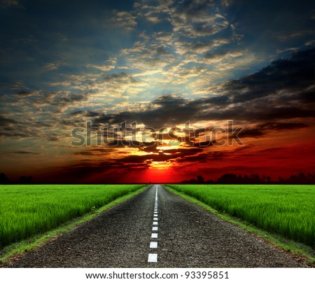 Empty paved road in the green fields - stock photo