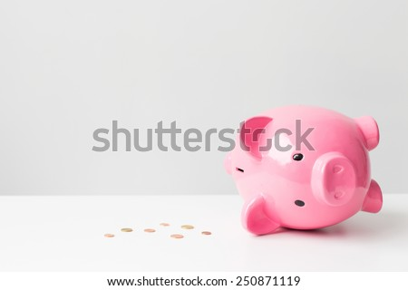 Empty piggy bank - stock photo