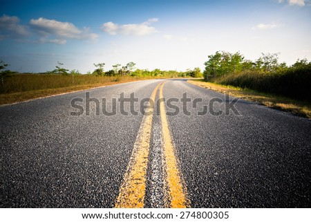 Empty road in the Everglades National Park