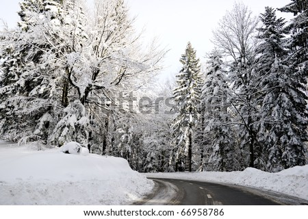 Empty road in the snowbound wood, winter scenery in Slovenia. - stock photo