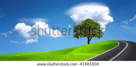 Empty road, panorama - stock photo
