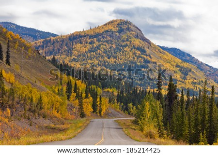 Empty road through autumn gold fall colored boreal forest taiga hills at North Klondike Highway, Yukon Territory, Canada