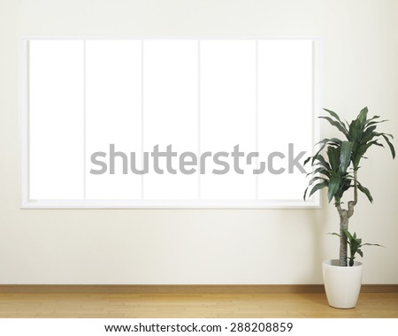 empty room with a houseplant - stock photo