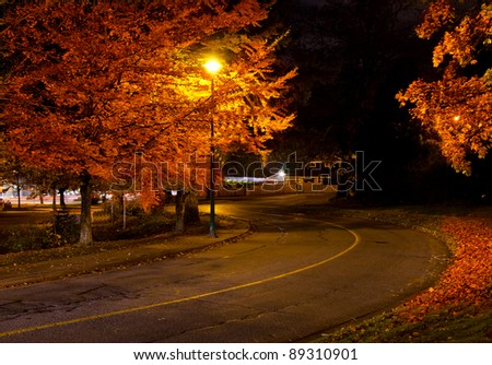 Empty street in a night time wit some autumn trees - stock photo