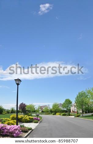 Empty Suburban Residential Neighborhood Street - stock photo