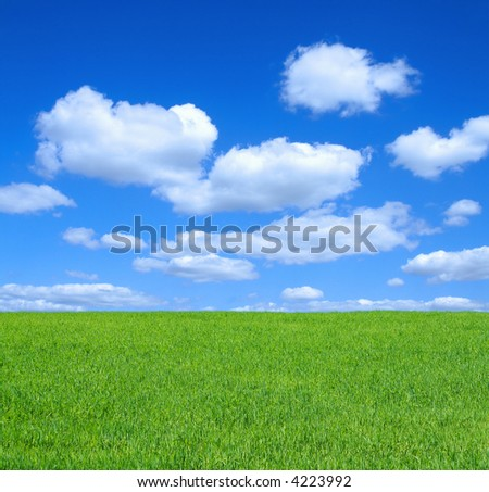 empty summer meadow against summrer sky with cumulus clouds - stock photo