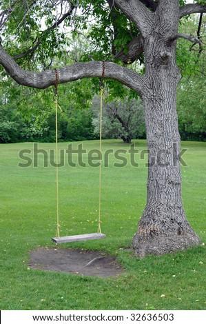 Empty swing - stock photo
