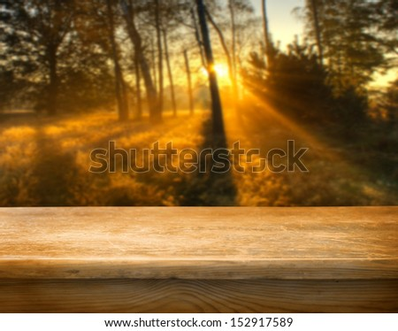 Empty table and autumn forest in background - stock photo