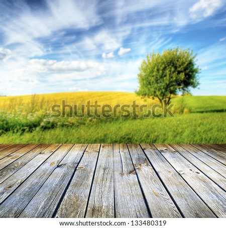 Empty table for photomontage. Summer landscape in background - stock photo