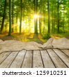 Empty table in forest for your photo montage - stock photo