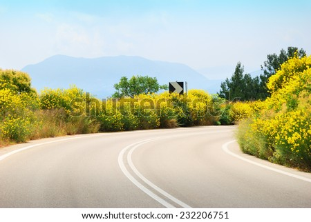 Empty tarmac road with yellow flowers on the sides - stock photo