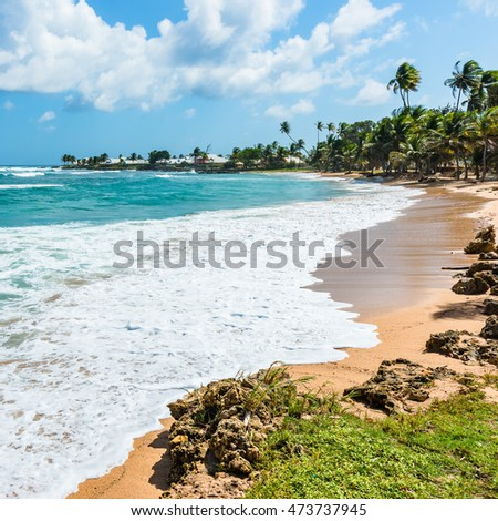 Empty tropical beach Tobago Caribbean square composition