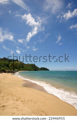 Empty, tropical beach with clean blue water.