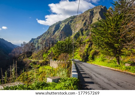 Empty typical road in Madeira island, Portugal - stock photo