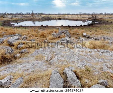 Empty waterhole in namibia game reserve, Etosha, national, Park, Ombika, Kunene, Namibia - stock photo