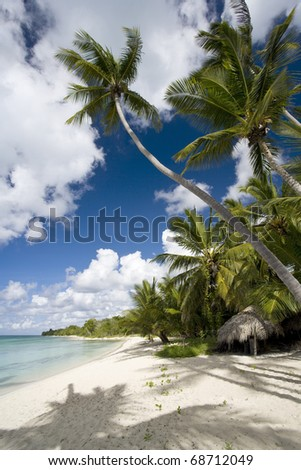 Empty white sand beach, ocean and palm trees. - stock photo