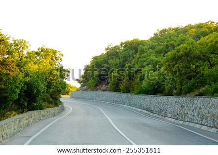 Empty Winding Road in Beautiful Green Summer Forest - stock photo