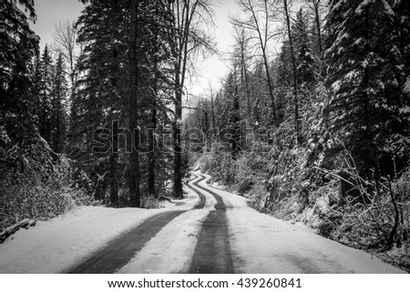Empty winding road through a forest covered in snow - stock photo
