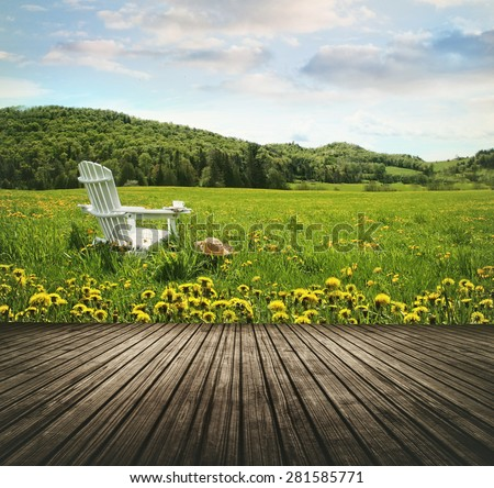 Empty wooden table top in open fields of dandelions and chair - stock photo