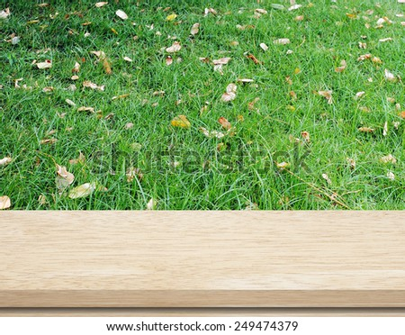 Empty wooden table with blur green grass background