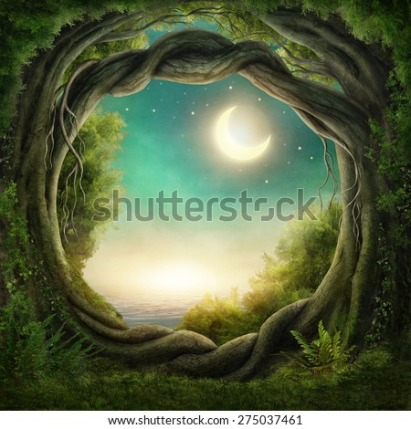 Enchanted dark forest in the moonlight - stock photo