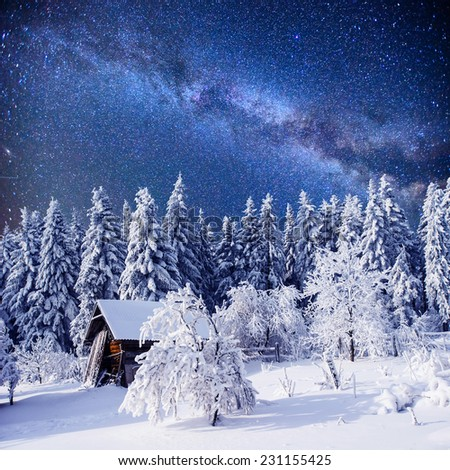 enchanting winter tale - stock photo