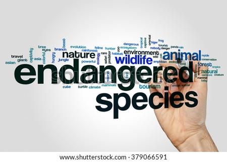 Endangered species word cloud - stock photo