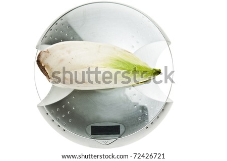 Endive isolated on food scale - stock photo
