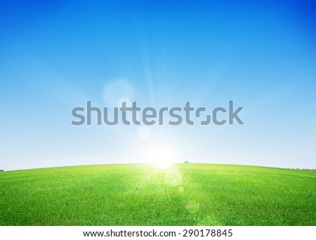 Endless green grass field and deep blue sky background - stock photo