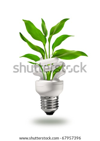 Energy saving eco lamp with green values concept - stock photo