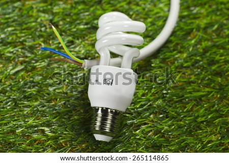 Energy saving lamp and power cable on grass - stock photo