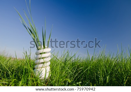 energy saving lamp in green field - stock photo