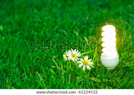 energy-saving lamp in green grass - stock photo