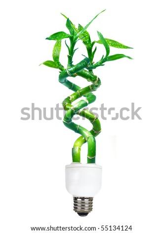 Energy saving lamp . Isolated over white background - stock photo
