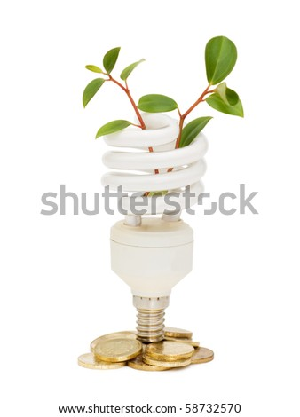 Energy saving lamp with green seedling on white - stock photo