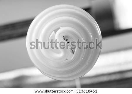 Energy saving light bulb - stock photo