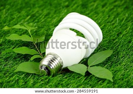 Energy Saving Light Bulb and Green Environmental Concept. - stock photo
