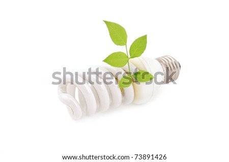 Energy saving light bulb and plant on white background - stock photo