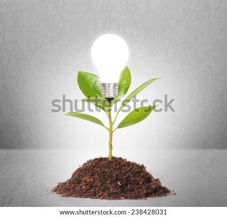 Energy saving light bulb, Creative light bulb idea in the hand - stock photo