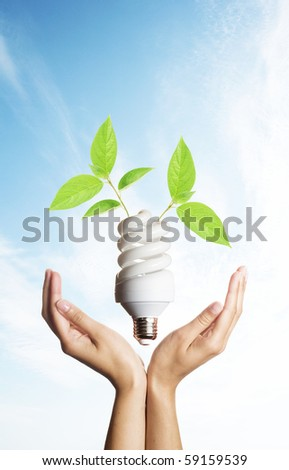 Energy saving light bulb in hands with green leaves - stock photo