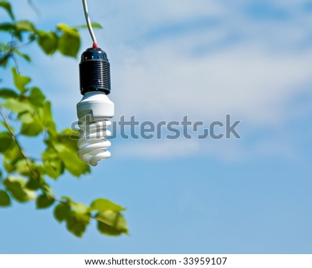 energy saving compact fluorescent light bulb environmental sciences essay Energy and the environment  top 10 rules for saving energy  replace a burnt-out light bulb with a new compact fluorescent bulb.