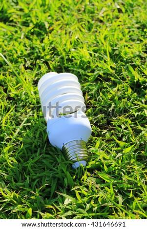 Energy saving light bulb on green grass background - stock photo