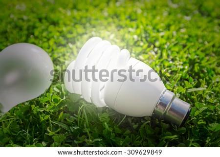 Energy saving light bulb versus standard on the grass - stock photo