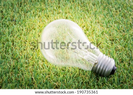 Energy saving light lamp bulb concept on green grass background - stock photo
