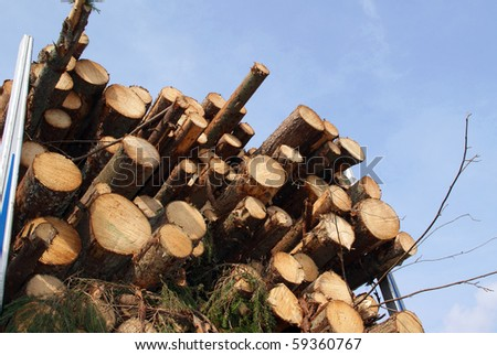 Energy Wood by the Truck Trailer Load - stock photo