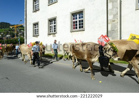 Engelberg, Switzerland - 27 September 2014: Farmers with a herd of cows on the annual transhumance at Engelberg on the Swiss alps